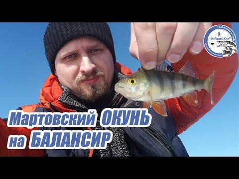 Мартовский окунь на балансир. Весенняя рыбалка cо льда.