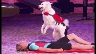 Sara & Hero: An EPIC Rescue Dog Act....Then The Dogs Go Off-Script | America's Got Talent 2017