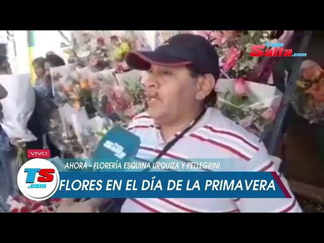 FLORES EN TIEMPO DE PRIMAVERA
