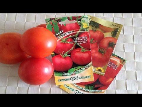 133. Сорта помидор, которые сажала и буду сажать.