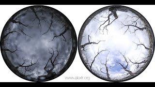 Revolver (videoart 2014)