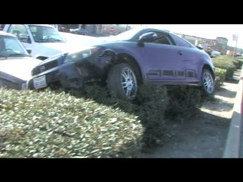 Crazy Car Crash - Car Lands On Bushes… Very Strong Bushes!