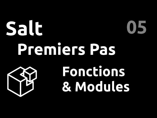 Premiers pas : fonctions et modules - #Salt 05
