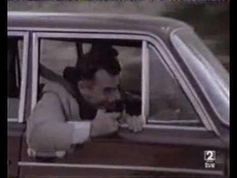 Perros callejeros III: Los últimos golpes del Torete.