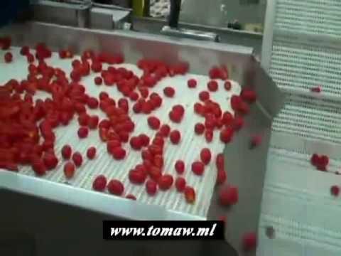 Jerusalem alkatxofak eta tomateak inportatzaile handizkako hornitzaile esportatzaile