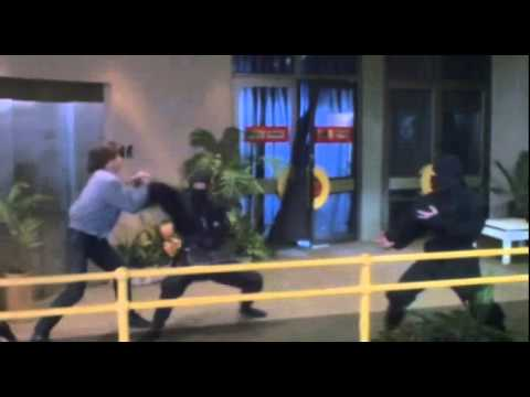 American Ninja 3: Blood Hunt   1  Steve James Movie 1989 HD