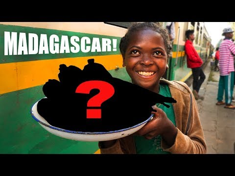 MALAGASY Street Food on a Train!!! (ABSOLUTE NIGHTMARE)