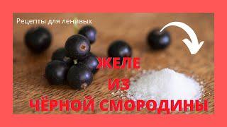 Желе из черной смородины / Рецепт для ленивых