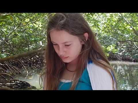 Guadeloupe 2016 - Living Explorations