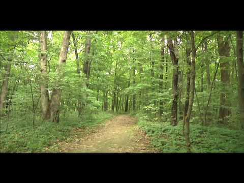 Weldon Springs Hiking Trail
