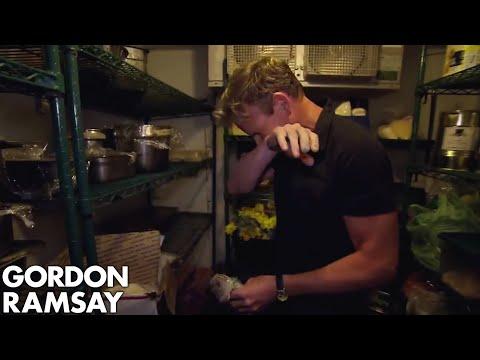 Download Youtube: Gordon Furious at Hotel's Moldy Fridge | Hotel Hell