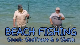 Beach Fishing for Sea Trout, Snook and Bonnet Head Shark