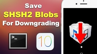 Save iOS 10.3.1 SHSH2 Blobs for Downgrading (3 METHODS - Mac & Windows) | Preserve Your Jailbreak!