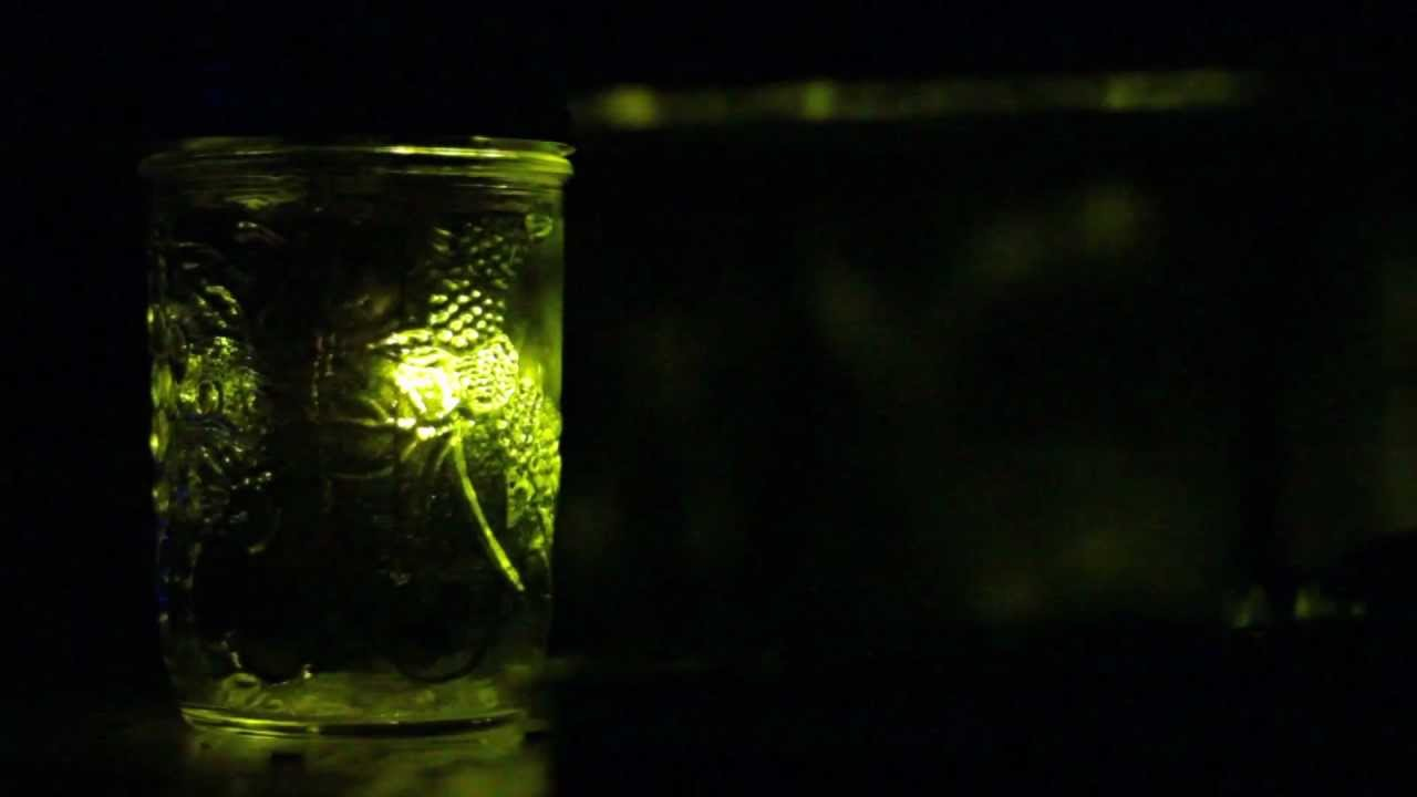 Firefly Jar with ATTiny and Arduino - YouTube for Firefly Insect In Jar  199fiz