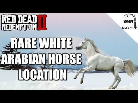 Rare White Arabian Horse Location Red Dead Redemption 2
