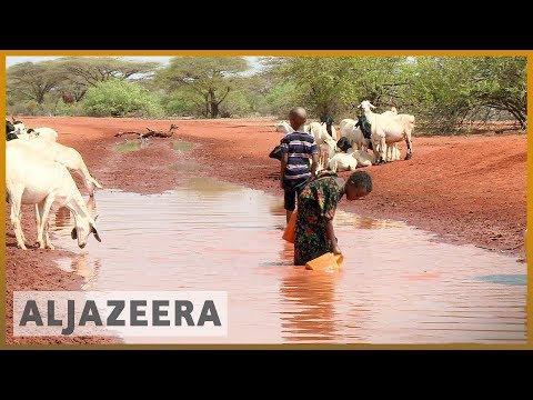 🇰🇪 More than half of Kenya population lacks clean water acce