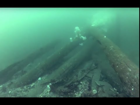 VideoLogbook: 3-4-17 Alki Cove2 Washington Full dive
