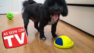 As Seen on TV Cat & Dog Toys TESTED!