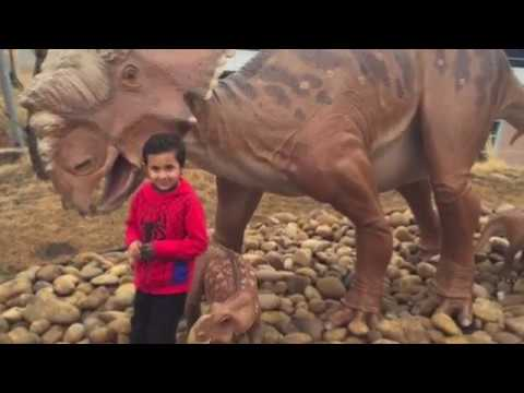 Royal Tyrrell Museum Calgary Alberta   Visit to best Dinosaur museum in the world