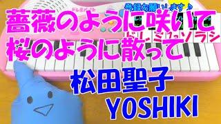 『せいせいするほど、愛してる』主題歌、松田聖子さんとYOSHIKIさんのコ...