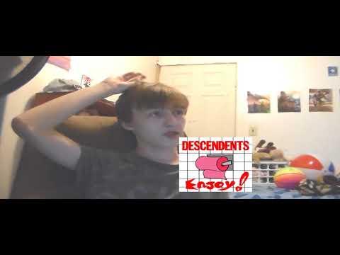 Descendents Enjoy Album Review