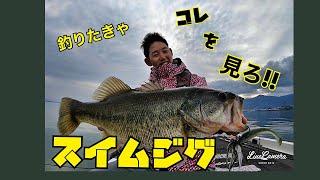 スイムジグマスターへの道 全て見せます! コジコジガイドホームページ http://www.kojikoji-guide.com/ コジコジガイドブログ https://ameblo.jp/akihisa-kojima/...
