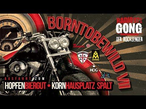BORN TO BE WILD VII - die Radio Gong Bikerausfahrt