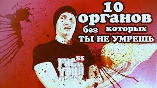 10 ОРГАНОВ БЕЗ КОТОРЫХ ТЫ НЕ УМРЕШЬ