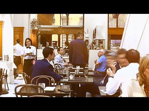 Maximus Cafe Sydney | Sydney's Best Coffee and Tea House