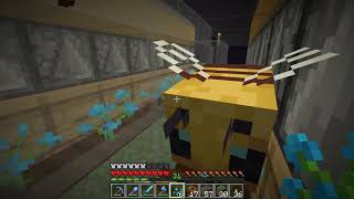 Etho Plays Minecraft - Episode 535: Bee Productive