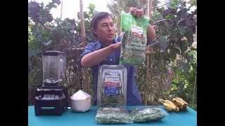Best Tasting Green Smoothie Using 3 Ingredients
