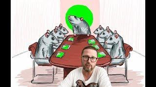 «Команды нет, партия крыс