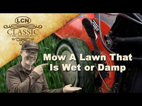 How To Mow A Lawn That Is Wet or Damp