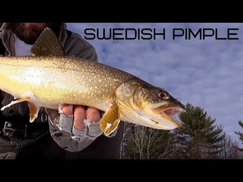 Maine Ice Fishing | Shallow Water Jigging For Lake Trout