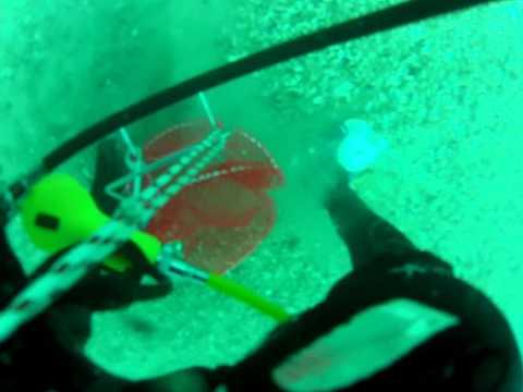 June 24 Drift Dive St Clair River