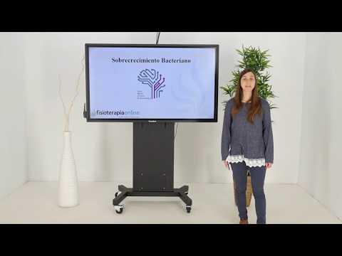 ¿Sabes qué es el Sobrecreimiento bacteriano ? - PNIE Instituto Xevi Verdaguer