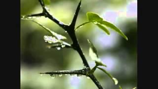 Mazhayil Ratri Mazhayil - Manjari - Romantic song