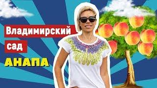 Фрукты Анапы. Яблоки, персики и виноград. Хозяйство «Владимирский сад»