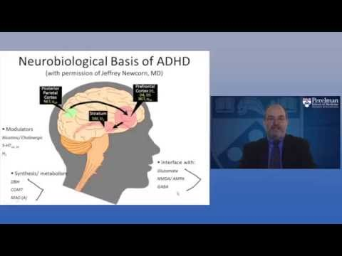 The Neurobiology of ADHD