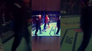 Khabib jumps out of the ring!