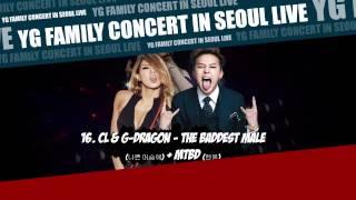 [YG FAMILY CONCERT] 16. CL & GD - The Baddest Male + MTBD [YG FAMILY CONCERT IN SEOUL LIVE - 2014]