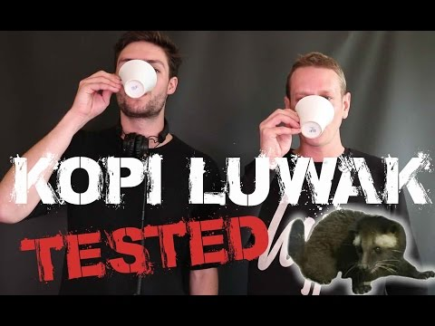 Kopi Luwak - The Worlds Most Expensive Coffee.. Is it the S#*t?