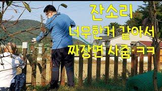 개 탈출방지/마당 울타리 철망 작업 /진돗개 가족