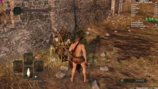 Dark Souls II All Bosses Speedrun in 2:23:50 (World Record)