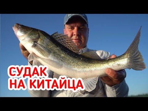 ПРОВОДКИ и ПРИМАНКИ! Рыбалка на судака на КИТАЙСКИЙ спиннинг!