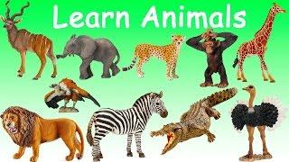 Английский детям. Учим животных из зоопрака. English for kids. Learn zoo animals.