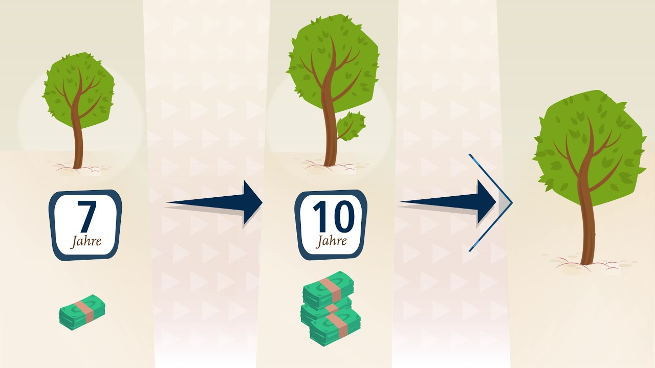 High Yield Investments with Tree Plantations | ShareWood