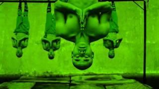 Shaolin Temple Dub - Barrington Levy