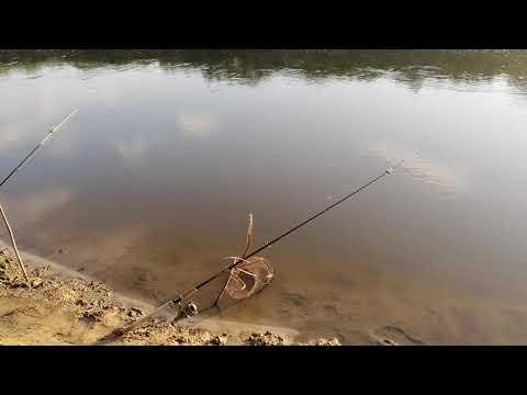 2019 рыбалка на хопре