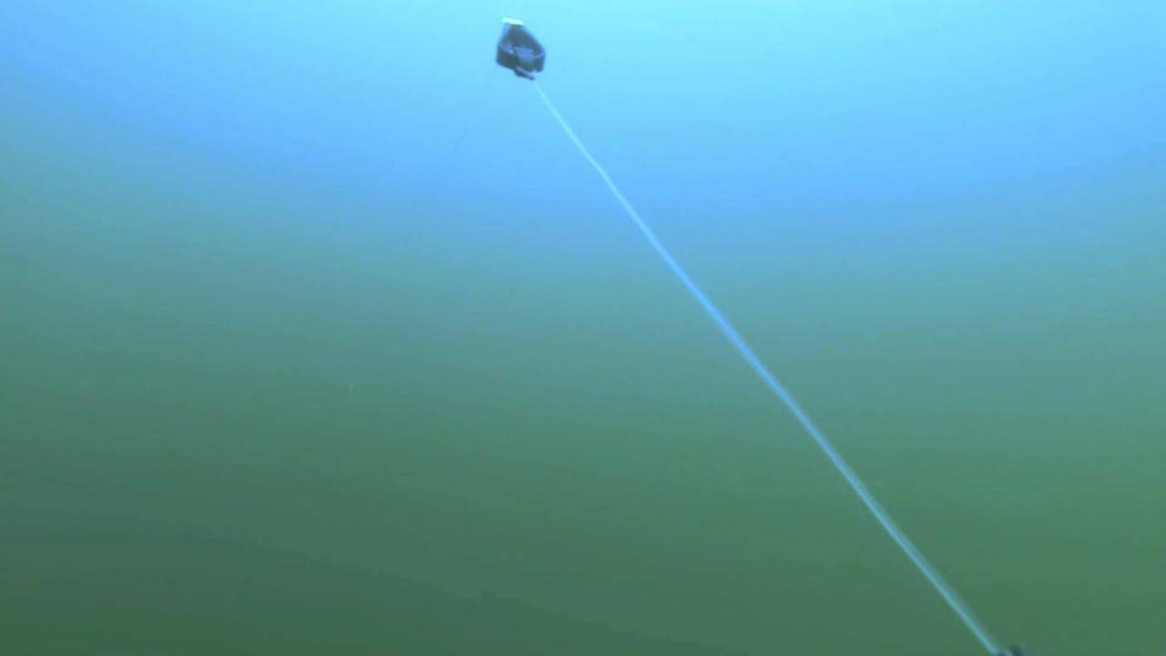 Download torsk øresund